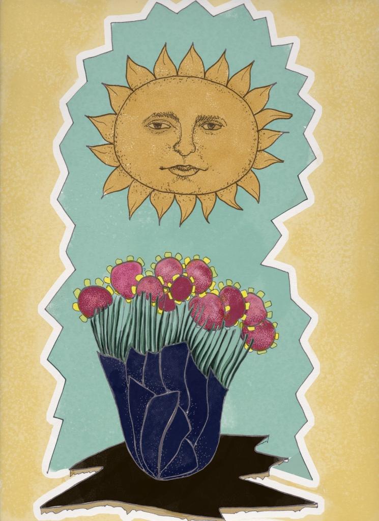 Sol, por Catalina Segú